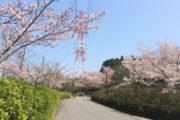 大山田キャンパス(29.4)2