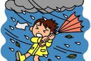 台風サイト