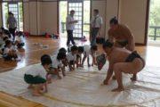 小学校 相撲授業(30.7)2