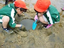 海の学校3(1.5)