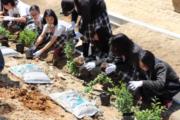 中学校 植樹祭(1.5)1