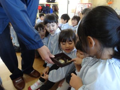 第一幼稚園 カブトムシ(29.11)2