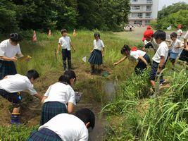 小学校 環境調査(30.6)1