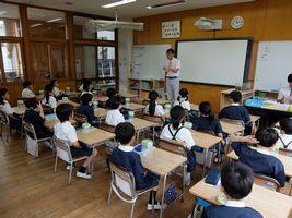 小学校 かぶと虫飼育(30.8)1