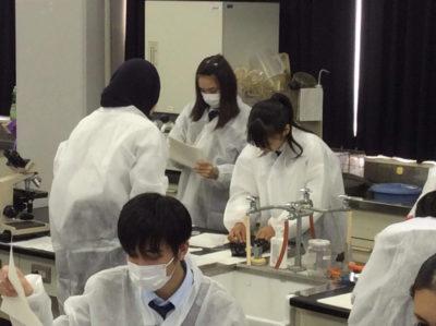 科学オリンピック(1.10)2
